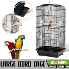 Bird Cage Birds Cages 2023501